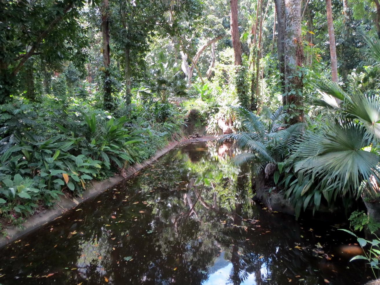 06. Le jardin botanique