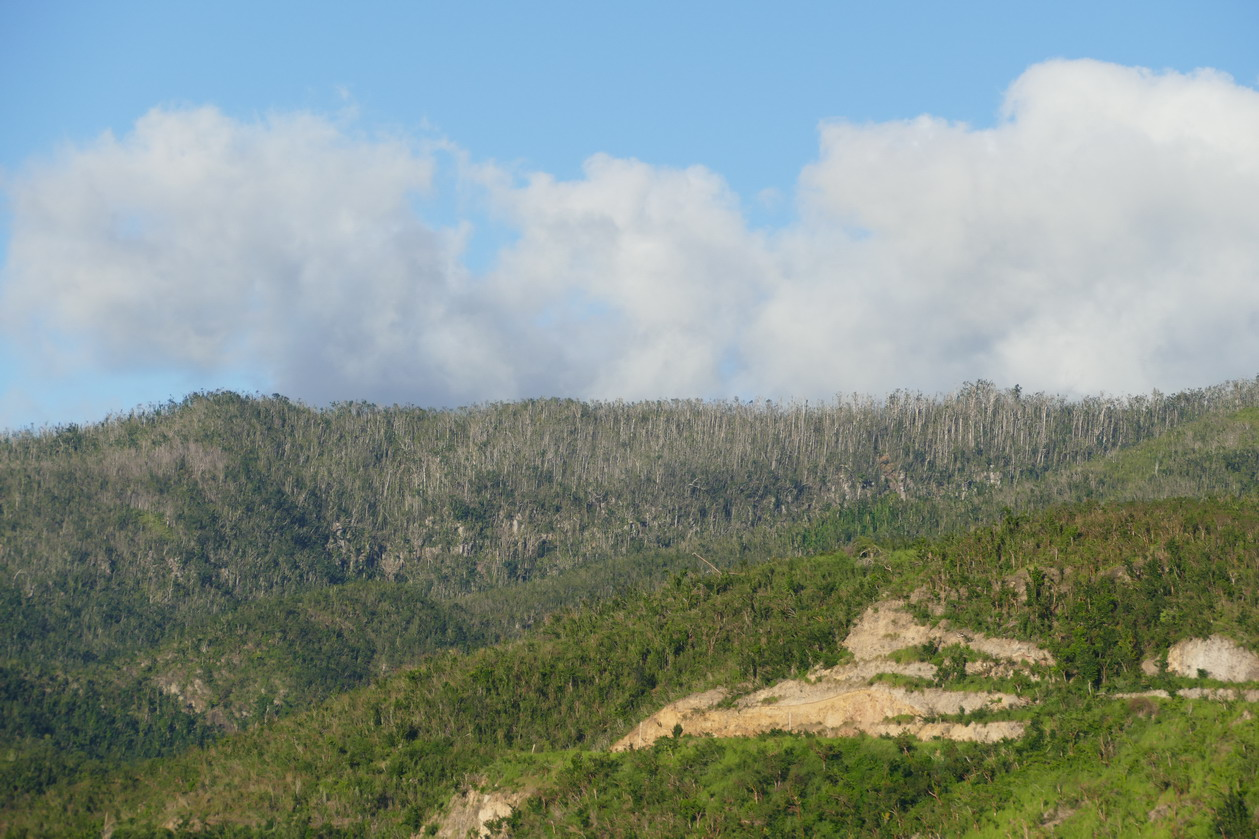 08. La Dominique ; le cyclone Maria a laissé des traces
