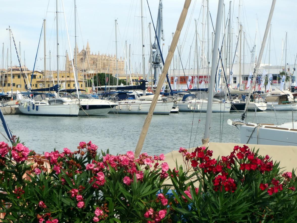 1. Palma de Majorque, la marina du RNCP