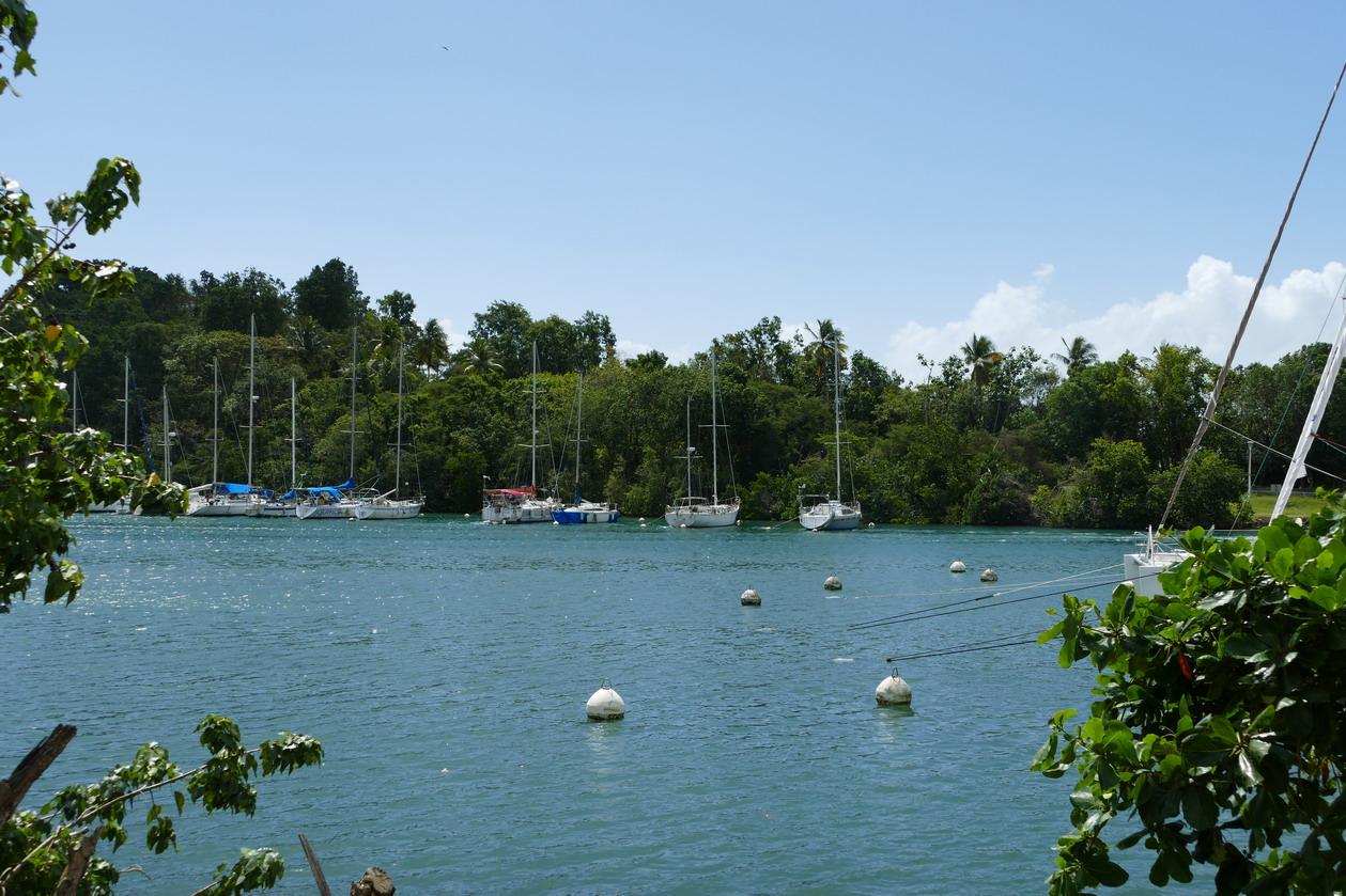 13. Pointe-à-Pitre, la marina du Bas-du-Fort (le Lagon bleu)