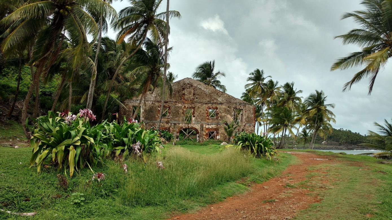 15. Promenade sur l'île Royale
