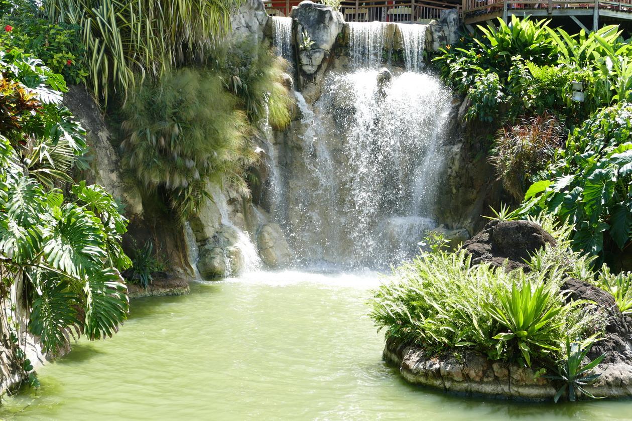 19. La Guadeloupe ; Deshaies, le jardin botanique