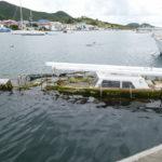 19. St Martin, Marigot, Simpson bay lagoon