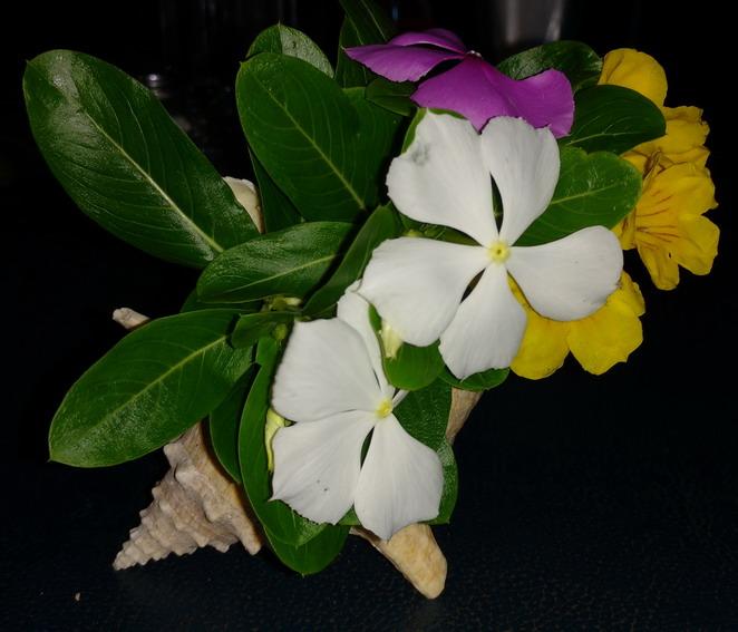 19. Union island, Chatam bay, les fleurs du restaurant