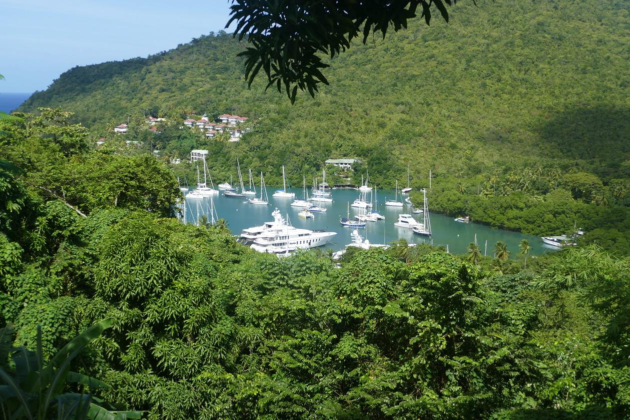 23. Ste Lucie, Marigot harbour, vue panoramique