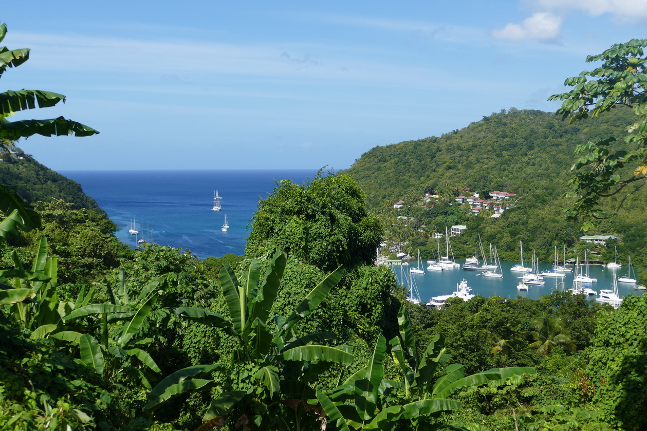 24. Ste Lucie, Marigot harbour, vue panoramique