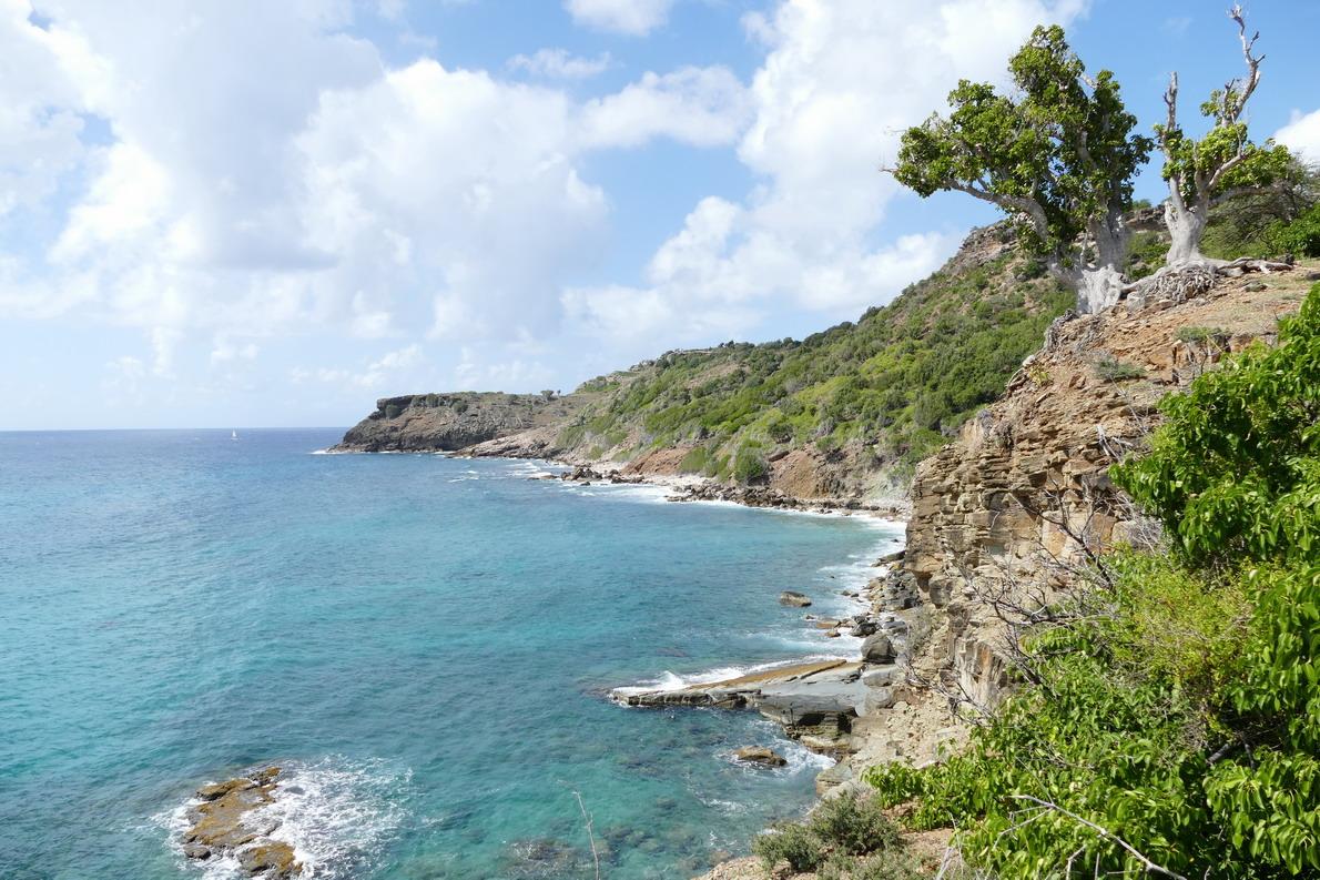 27. Antigua, English harbour, la côte