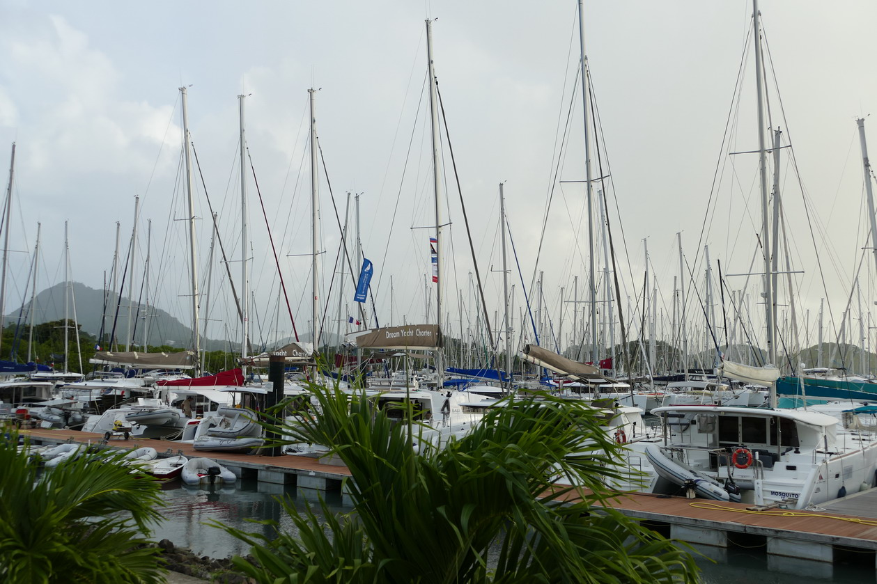 29. La Martinique, la marina du Marin