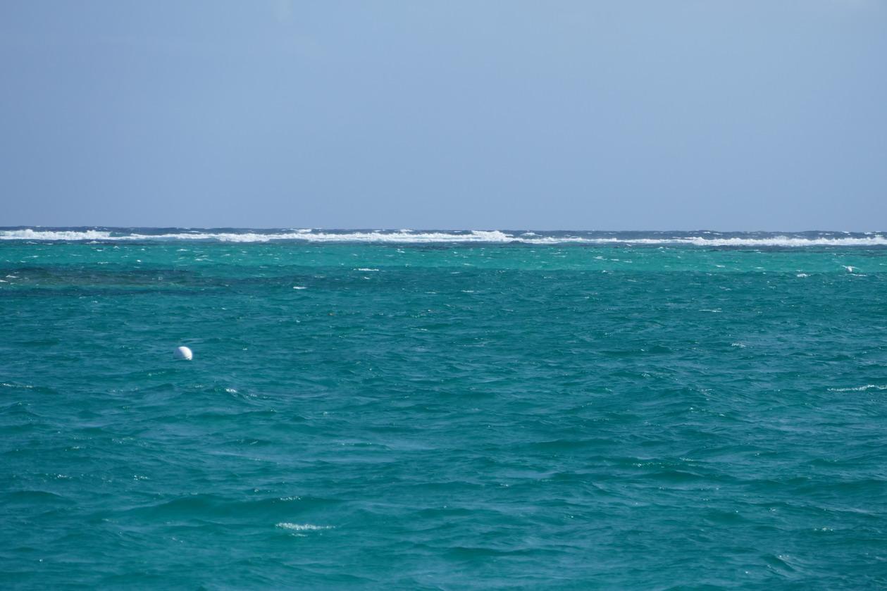 35. L'alizé projette les vagues sur la barrière corallienne