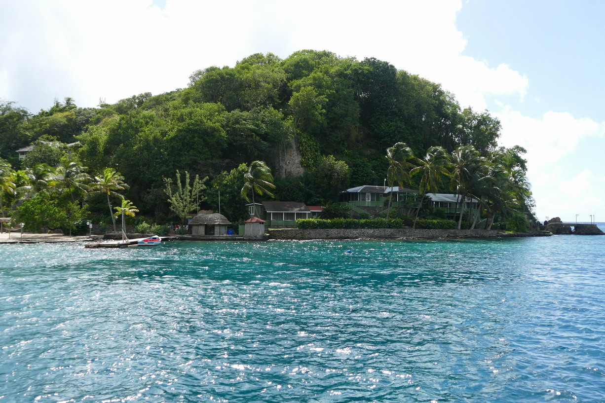 35. St Vincent, Young island
