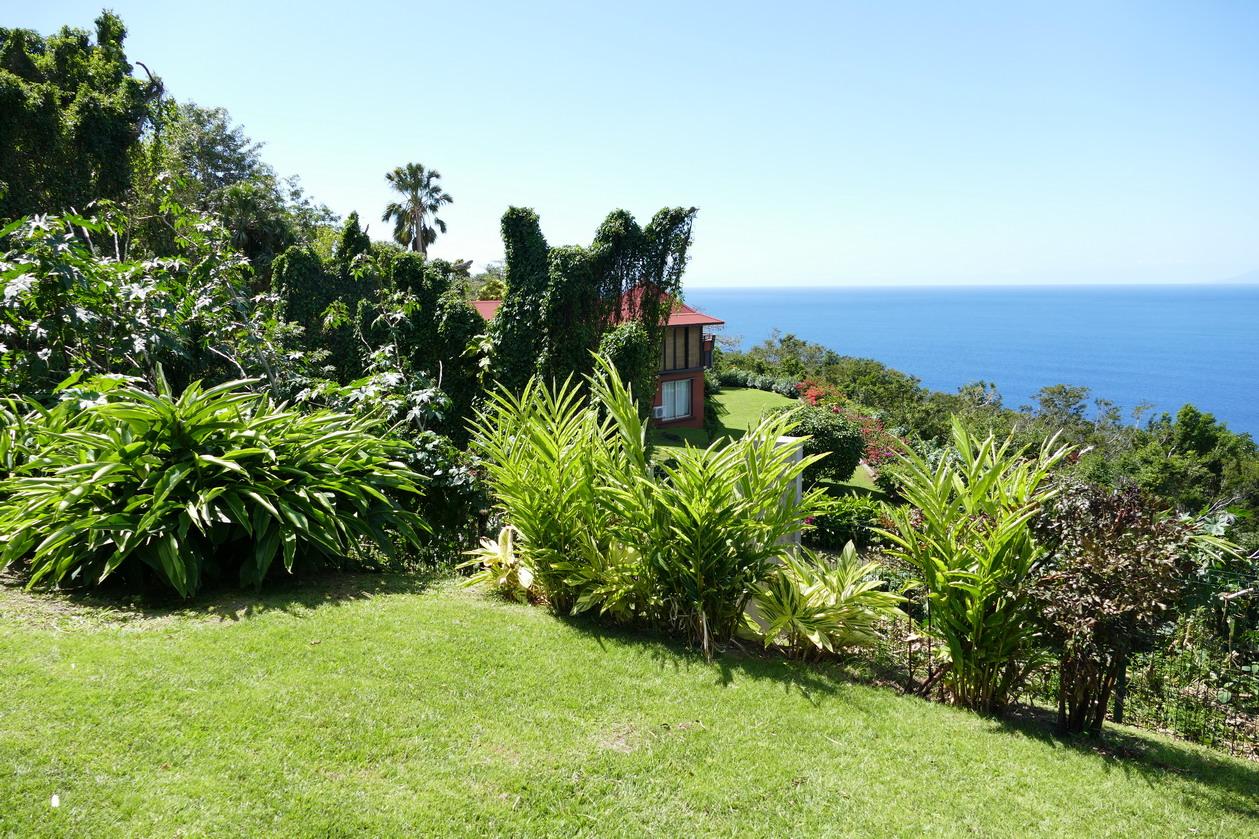 37. La Guadeloupe ; Deshaies, le jardin botanique
