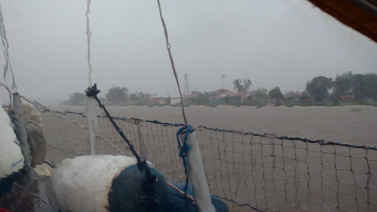 37. Sous la pluie chaude