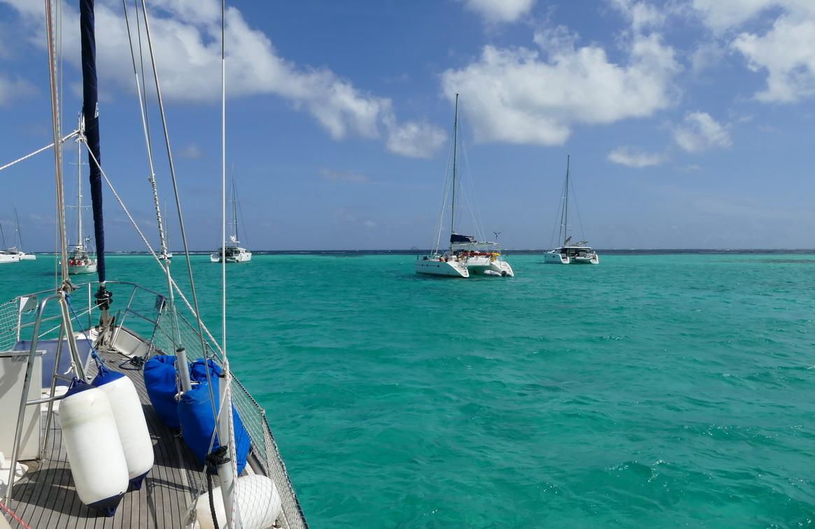 41. Les Tobago cays, un beau vert turquoise