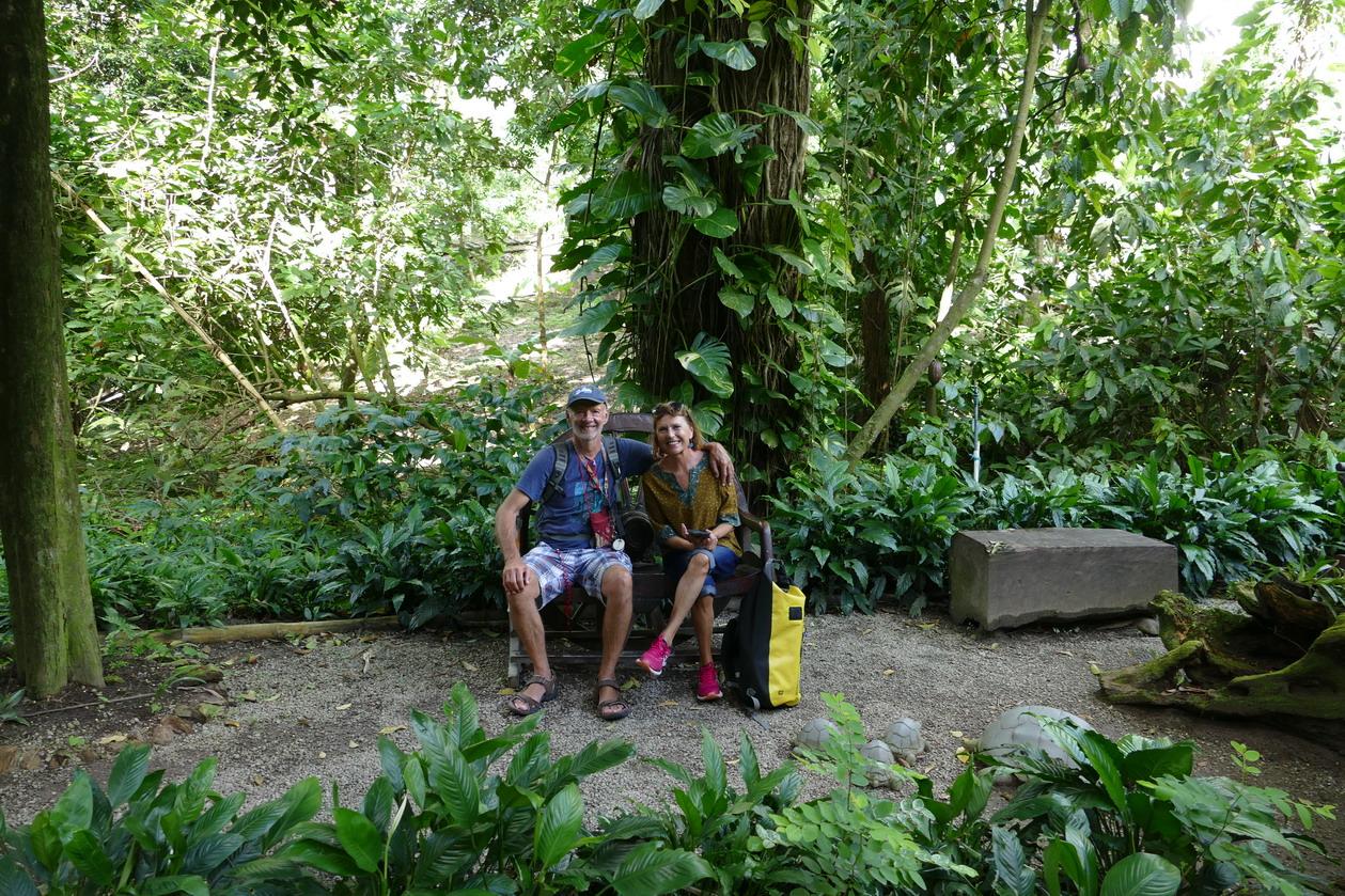 42. Soufriere, le jardin botanique