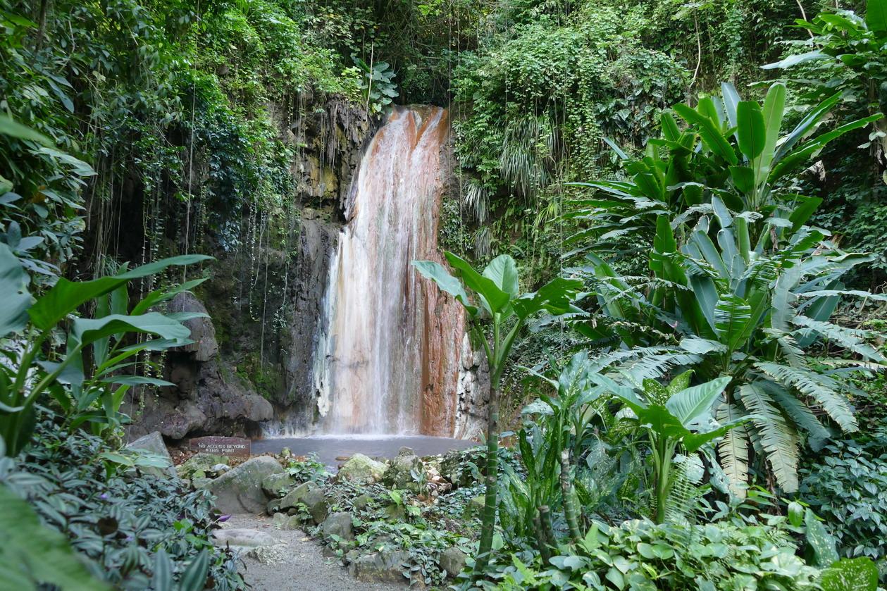 45. Soufriere, le jardin botanique, la cascade