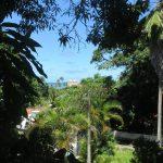 7. Visages d'Olinda