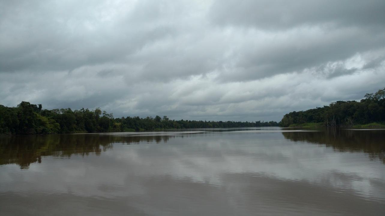01. En remontant le Suriname