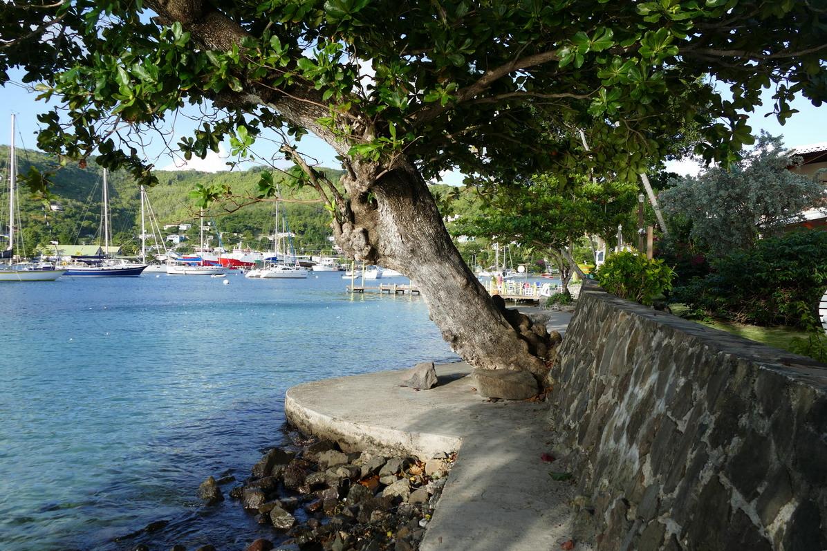 05. Bequia, Port Elisabeth, l'hôtel pension Gingerbread sur la rive sud