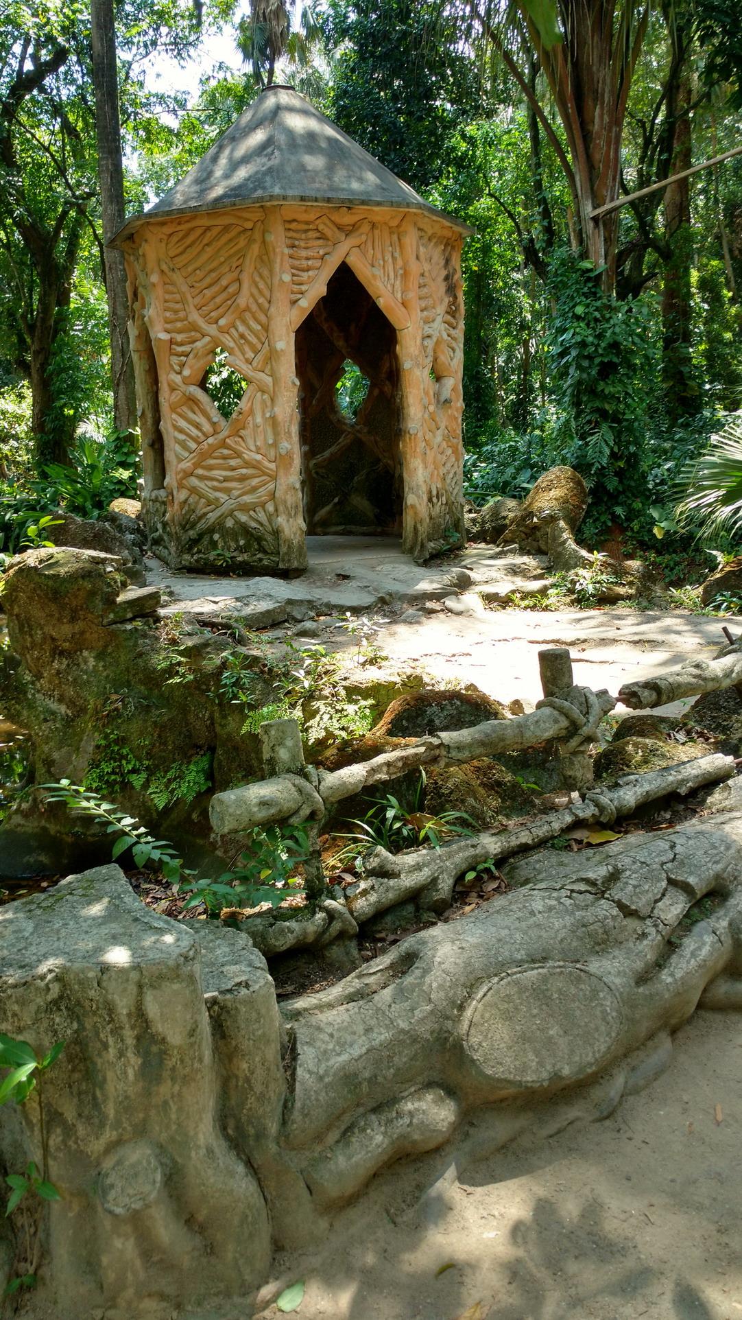 11. Le jardin botanique