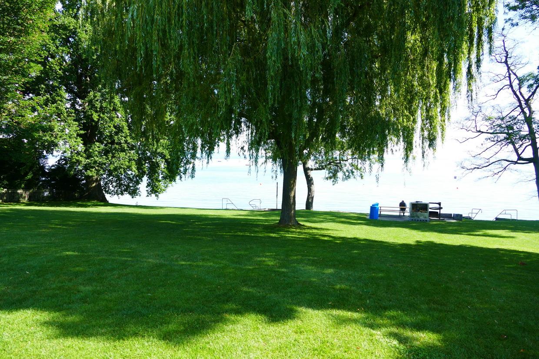 11. Le lac de Constance - rive sud
