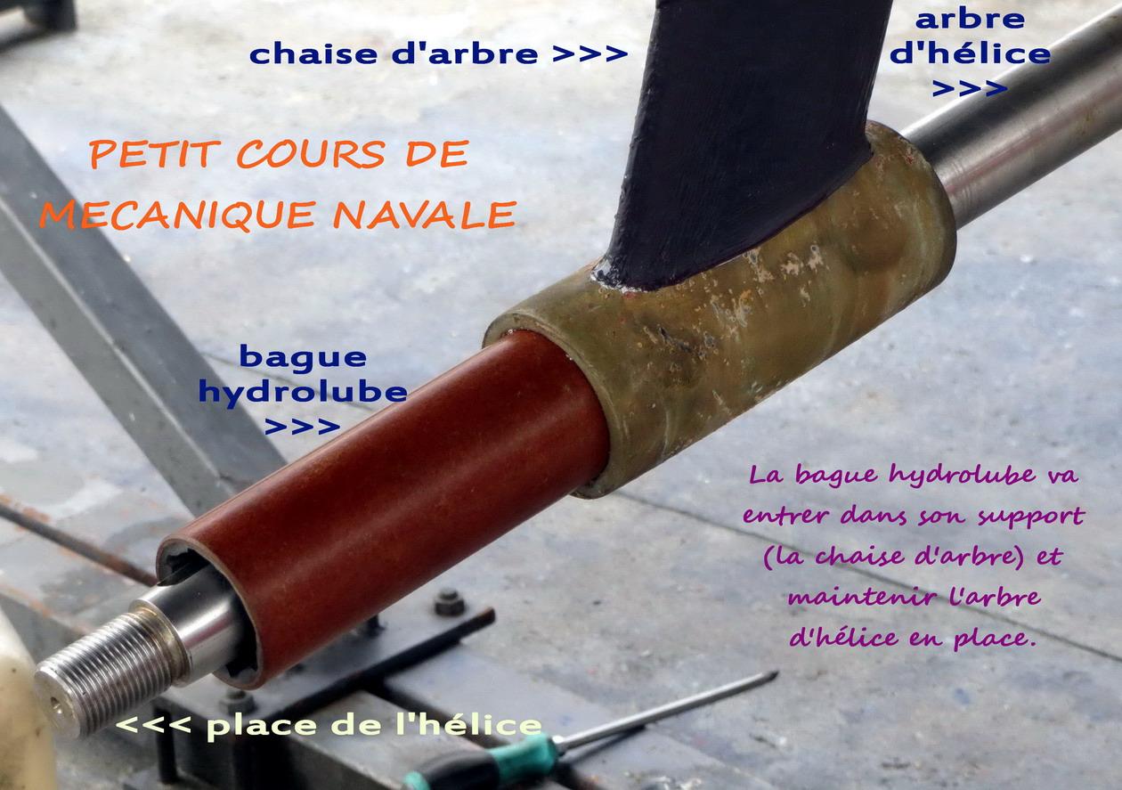 11. Remplacement de la bague hydrolube