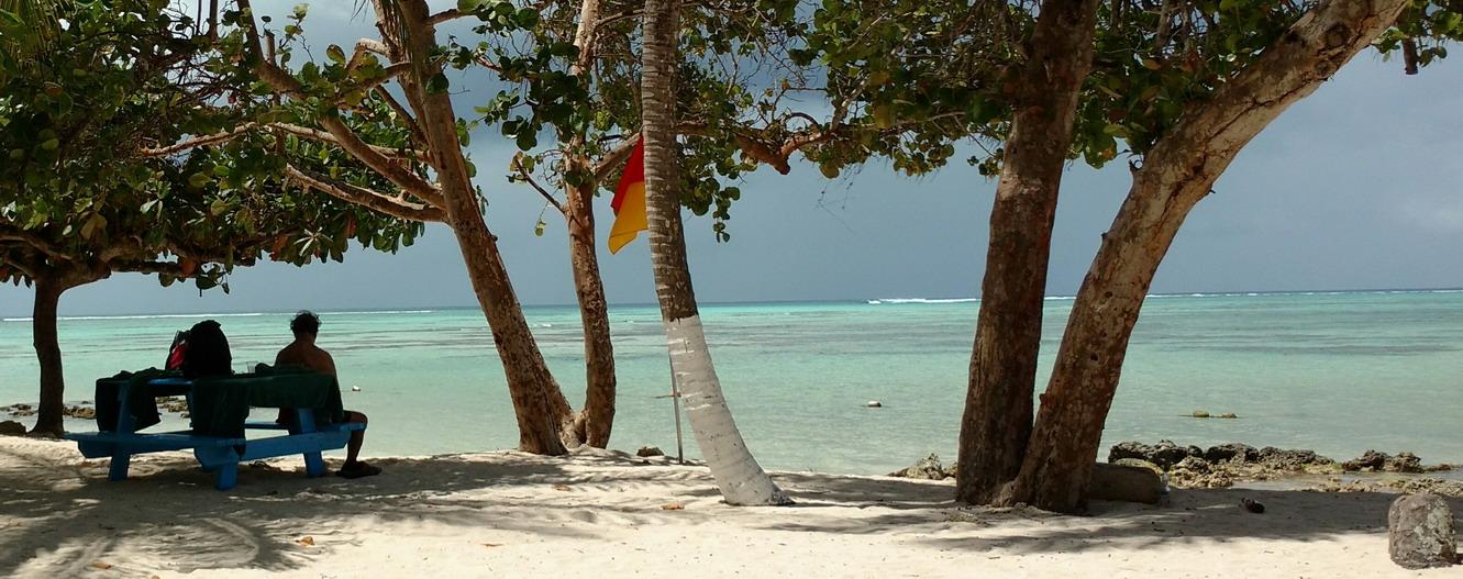 12. Buccoo reef, récif corallien