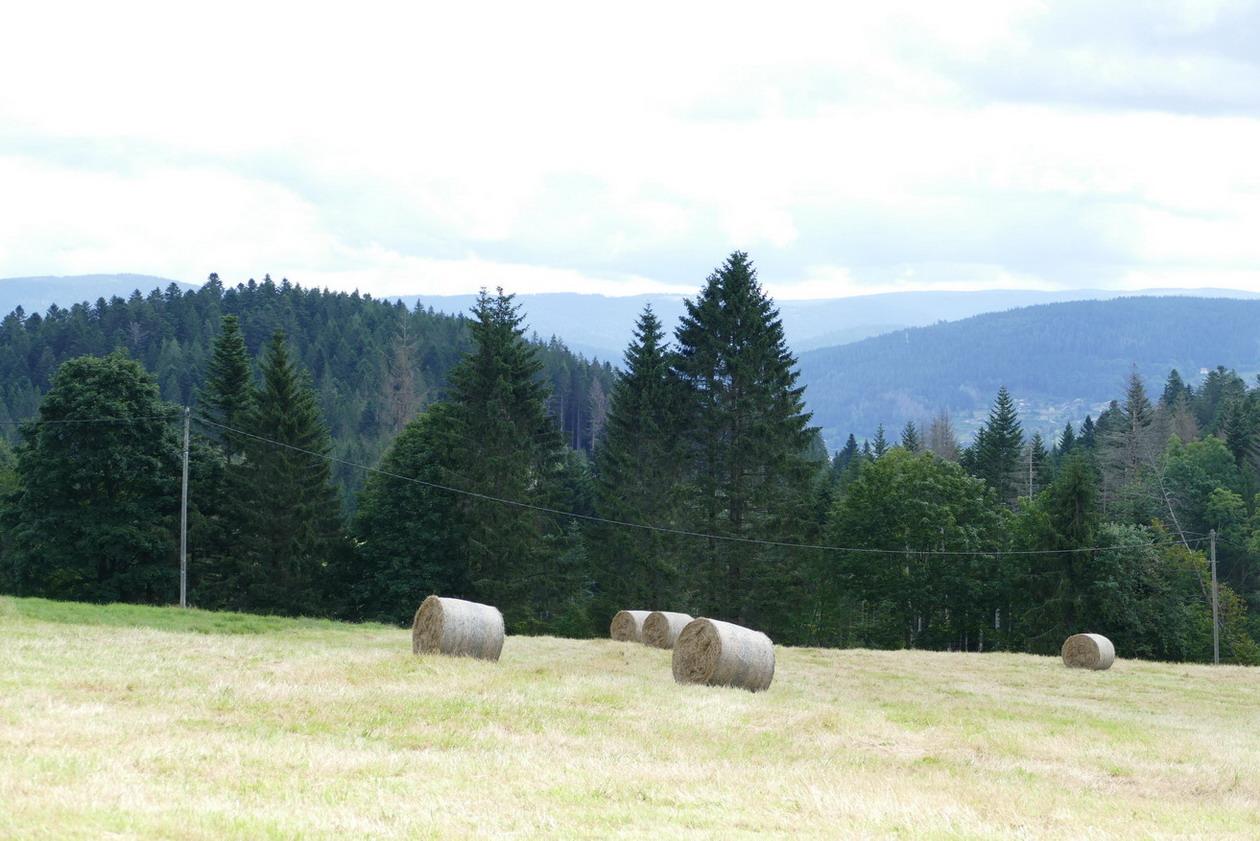 12. Les routes des Hautes-Vosges