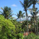 12. Olinda, à l'arrière plan Recife