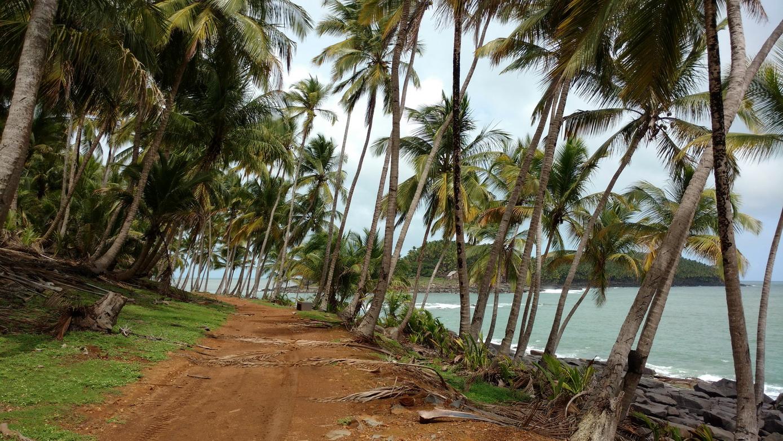 13. Promenade sur l'île Royale