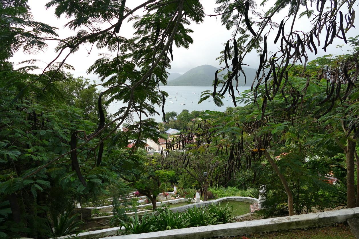 14. La Martinique, le calvaire de Ste Anne ; encore plus haut
