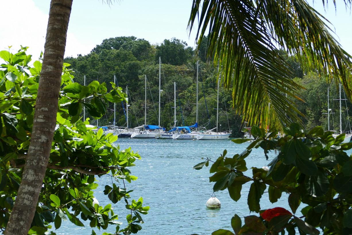 14. Pointe-à-Pitre, la marina du Bas-du-Fort (le Lagon bleu)