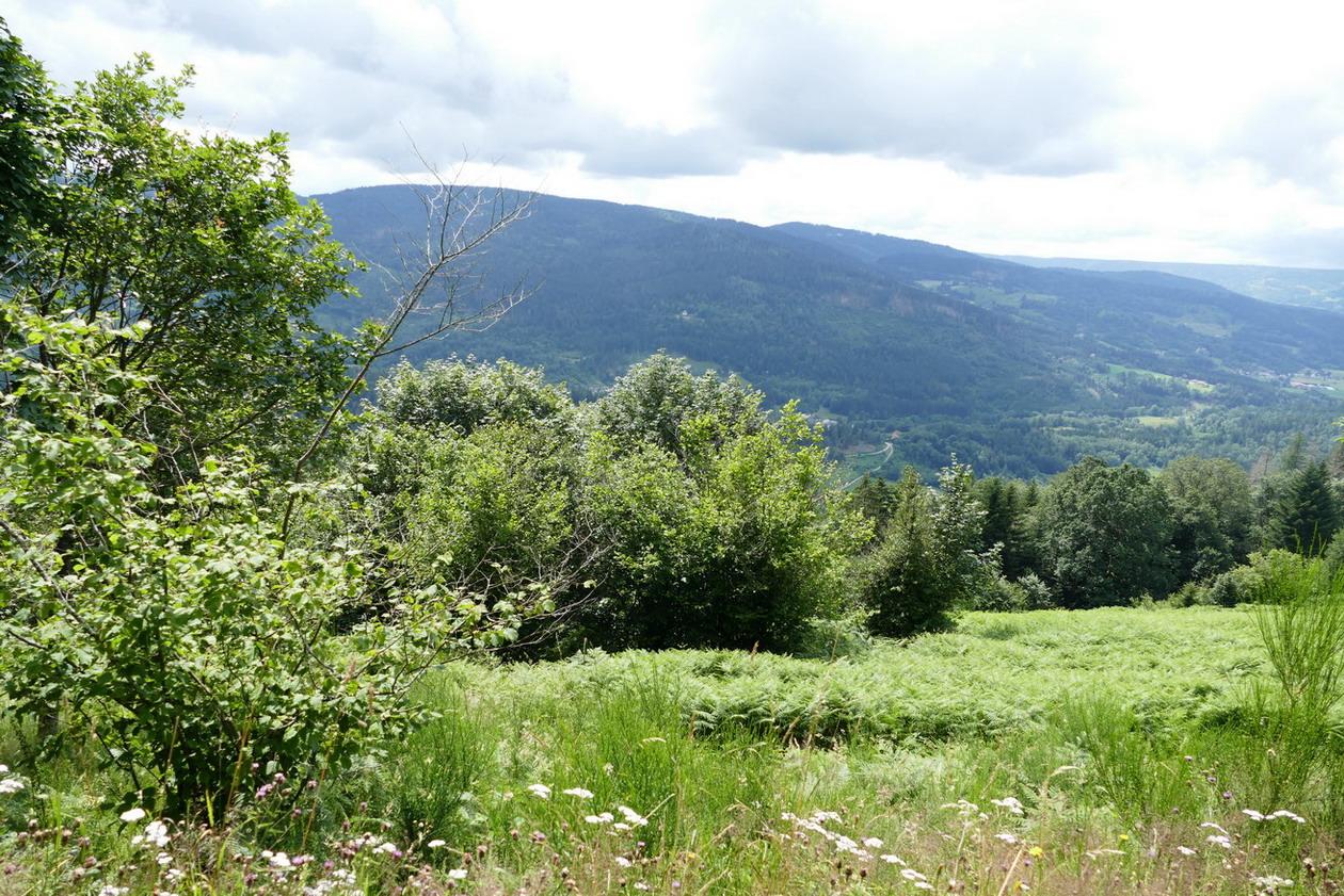16. Les routes des Hautes-Vosges
