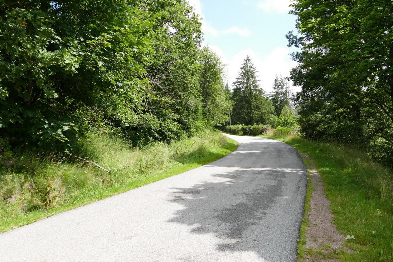 17. Les routes des Hautes-Vosges