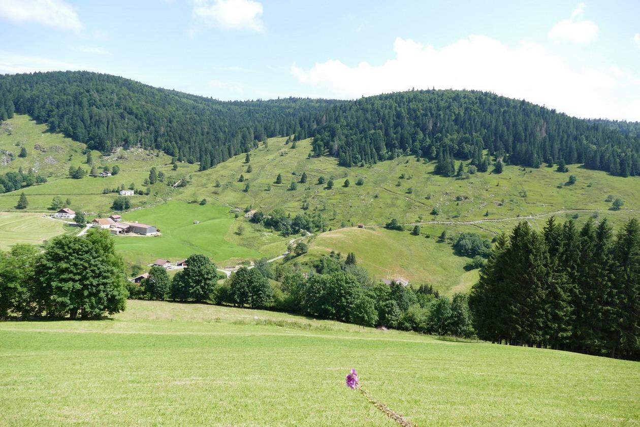 18. Les routes des Hautes-Vosges