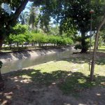 20. Recife, sa promenade ombragée