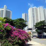 21. Recife, un quartier moderne
