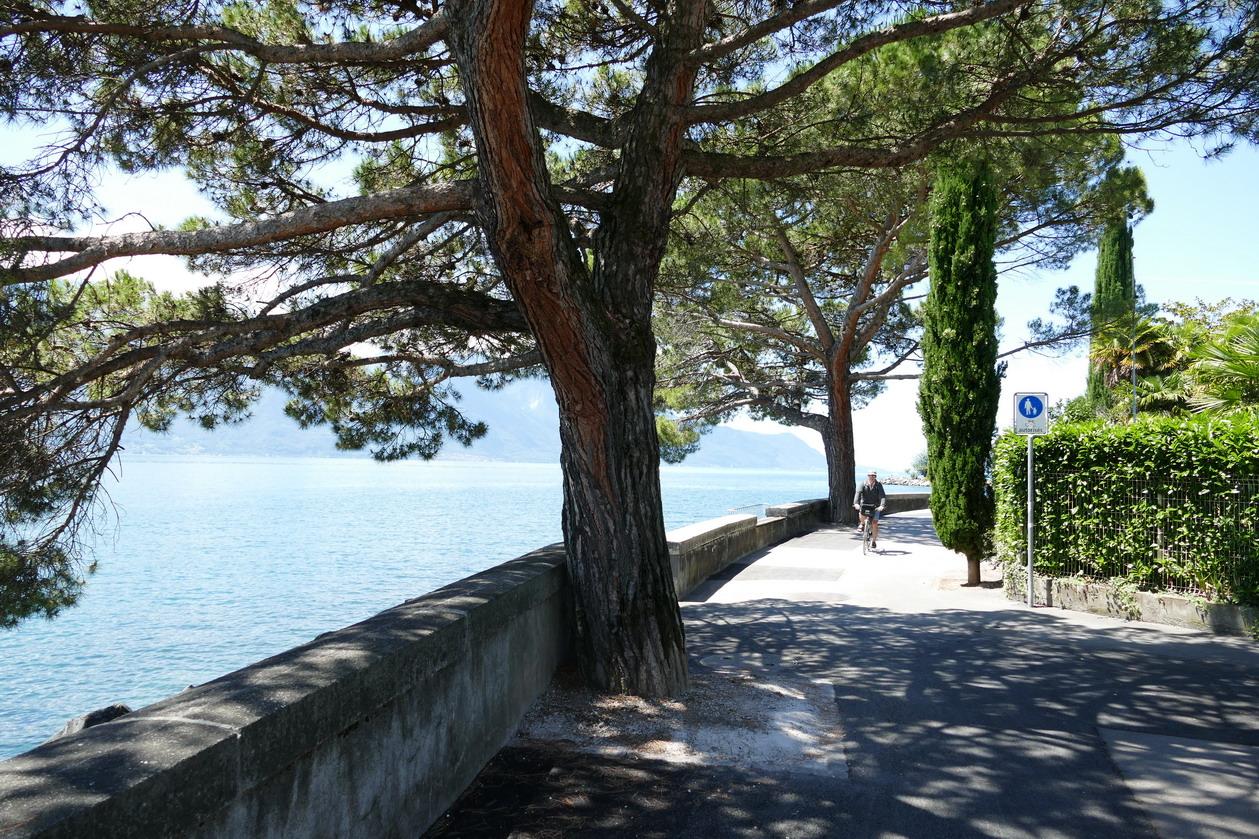 22. Lac Léman - Montreux