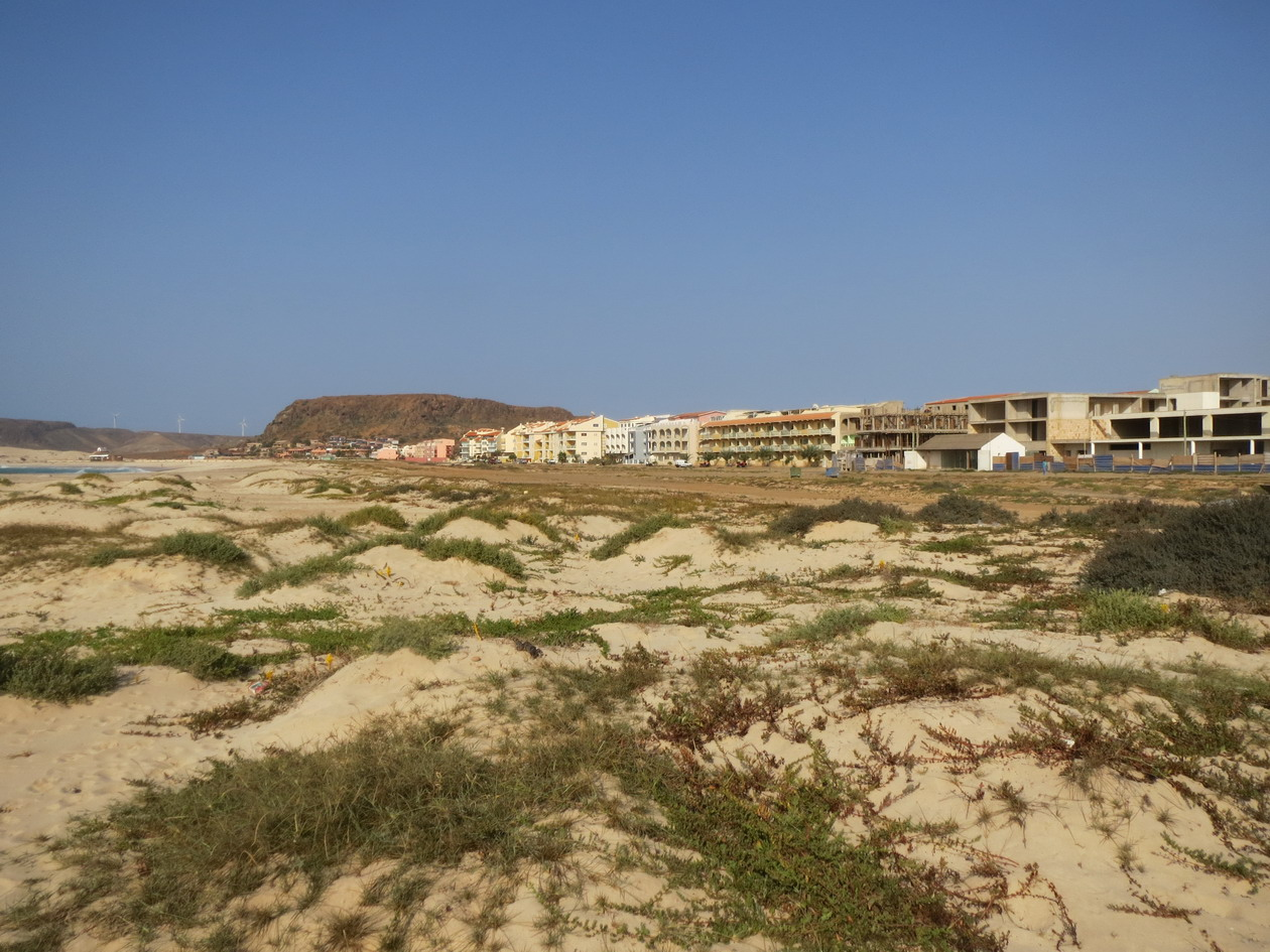 23. Longue file d'hôtels attend touristes