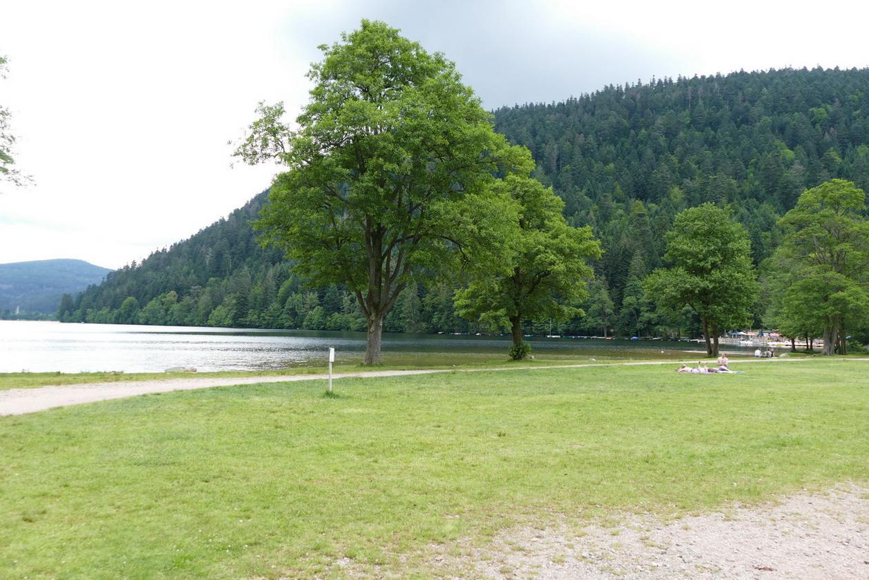 25. Le lac de Xonrupt-Longemer