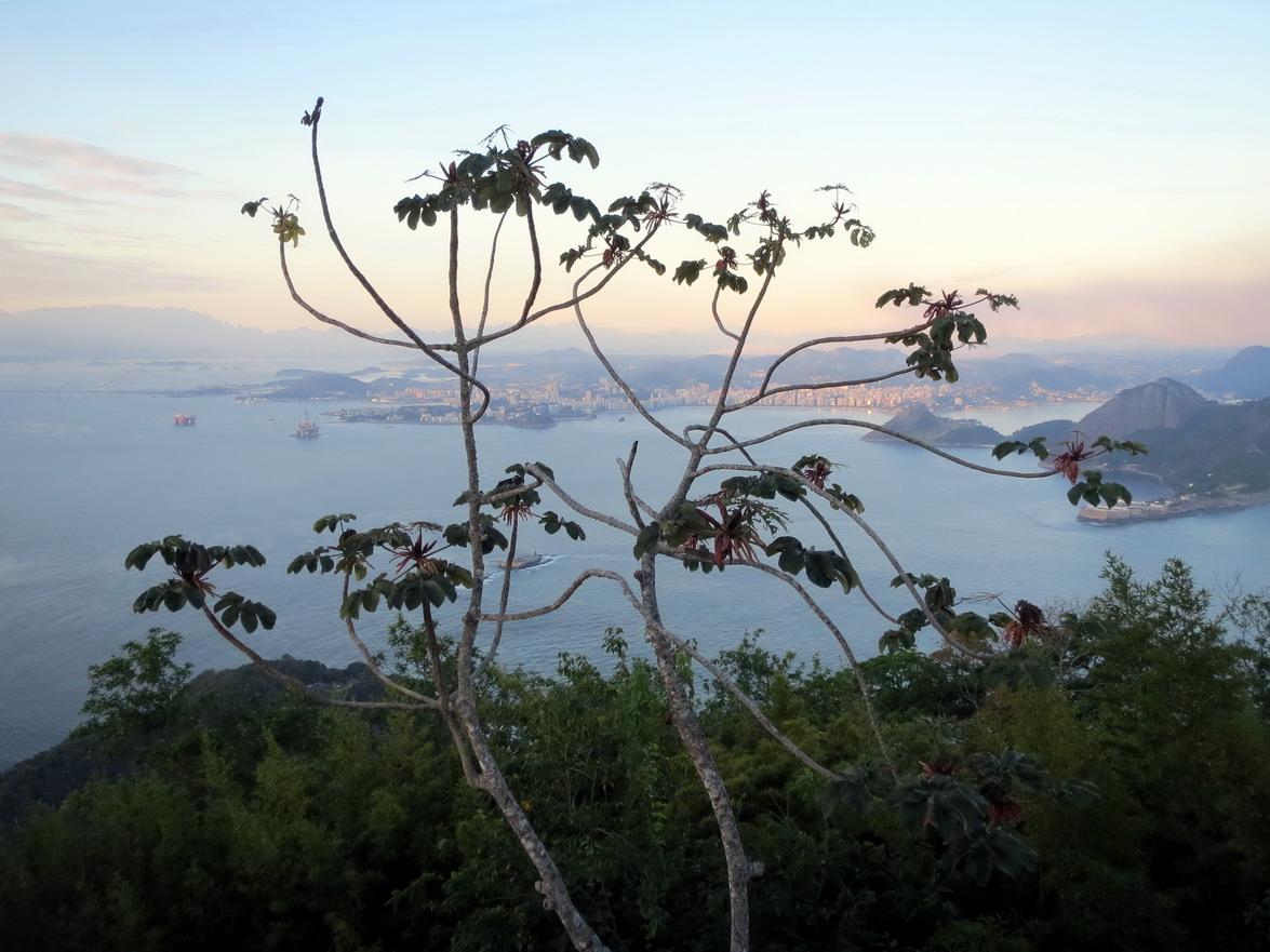 26. Du Pain de sucre vue de Niteroi, ville située de l'autre côté de la baie