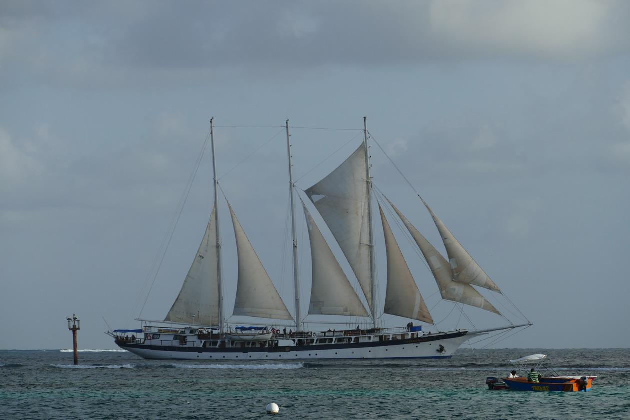 27. Les boat boys, un peu pirates sur les bords, imaginent tout ce qu'ils pourraient vendre aux passagers de ce fier voilier