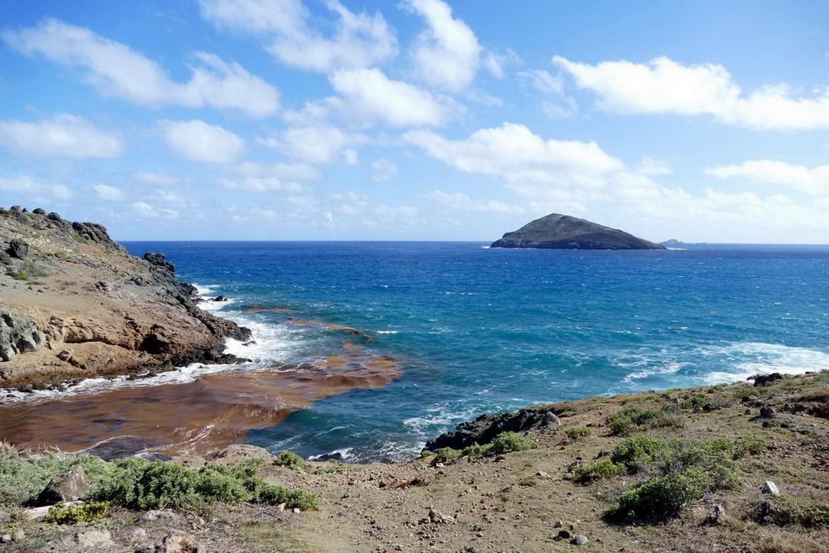 32. St Barth, l'anse Paschal encombrée de sargasses et l'île Chevreau dans la houle d'est