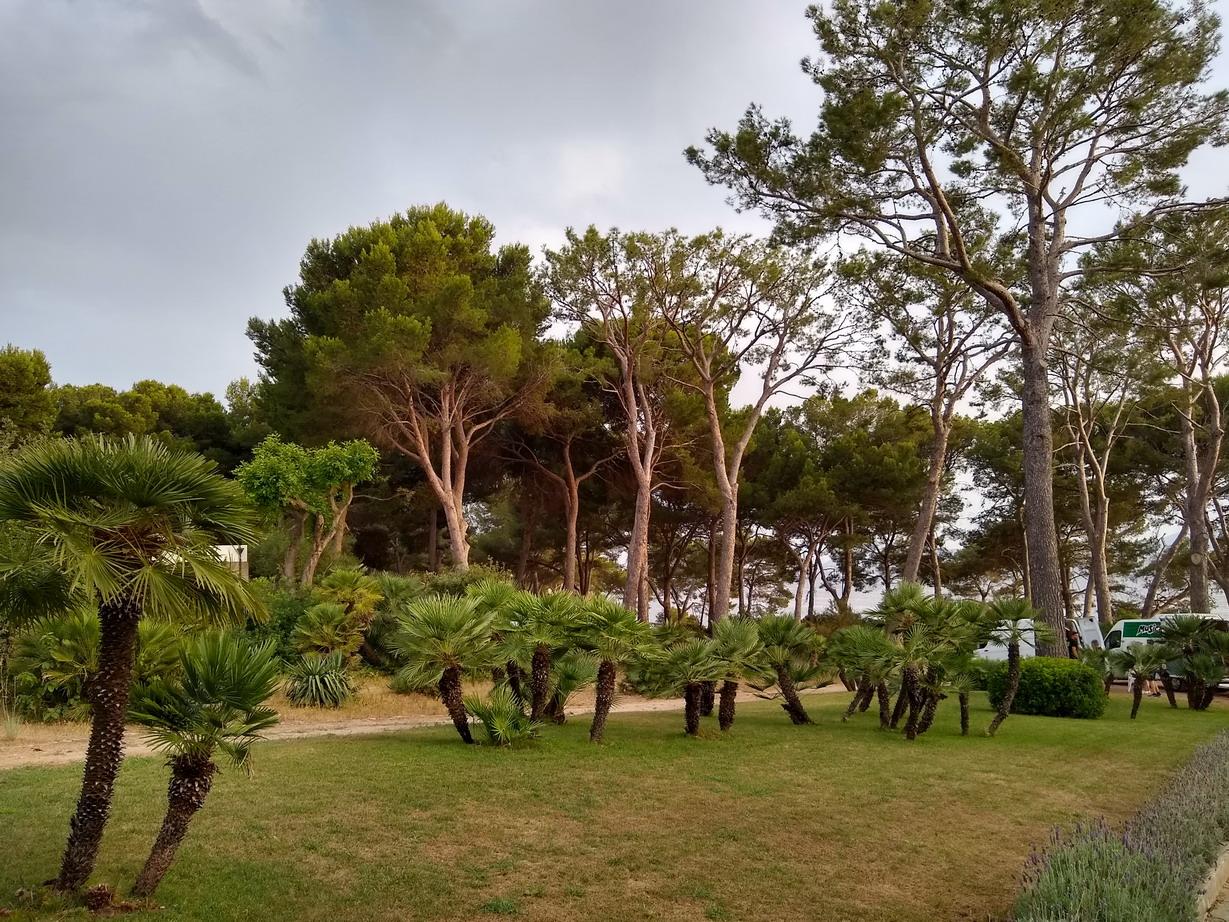 32. The Royal hideaway hotel au coeur d'un immense parc