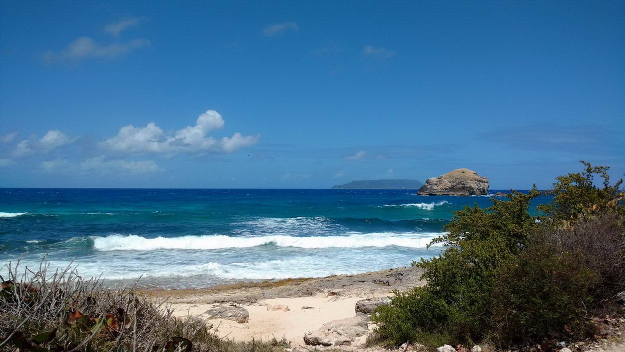 36. Guadeloupe, la Pointe des châteaux