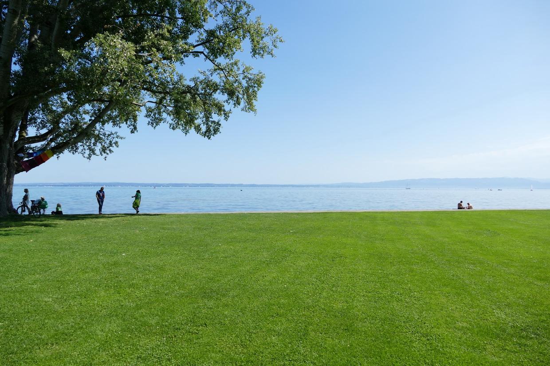 36. Le lac de Constance - rive sud