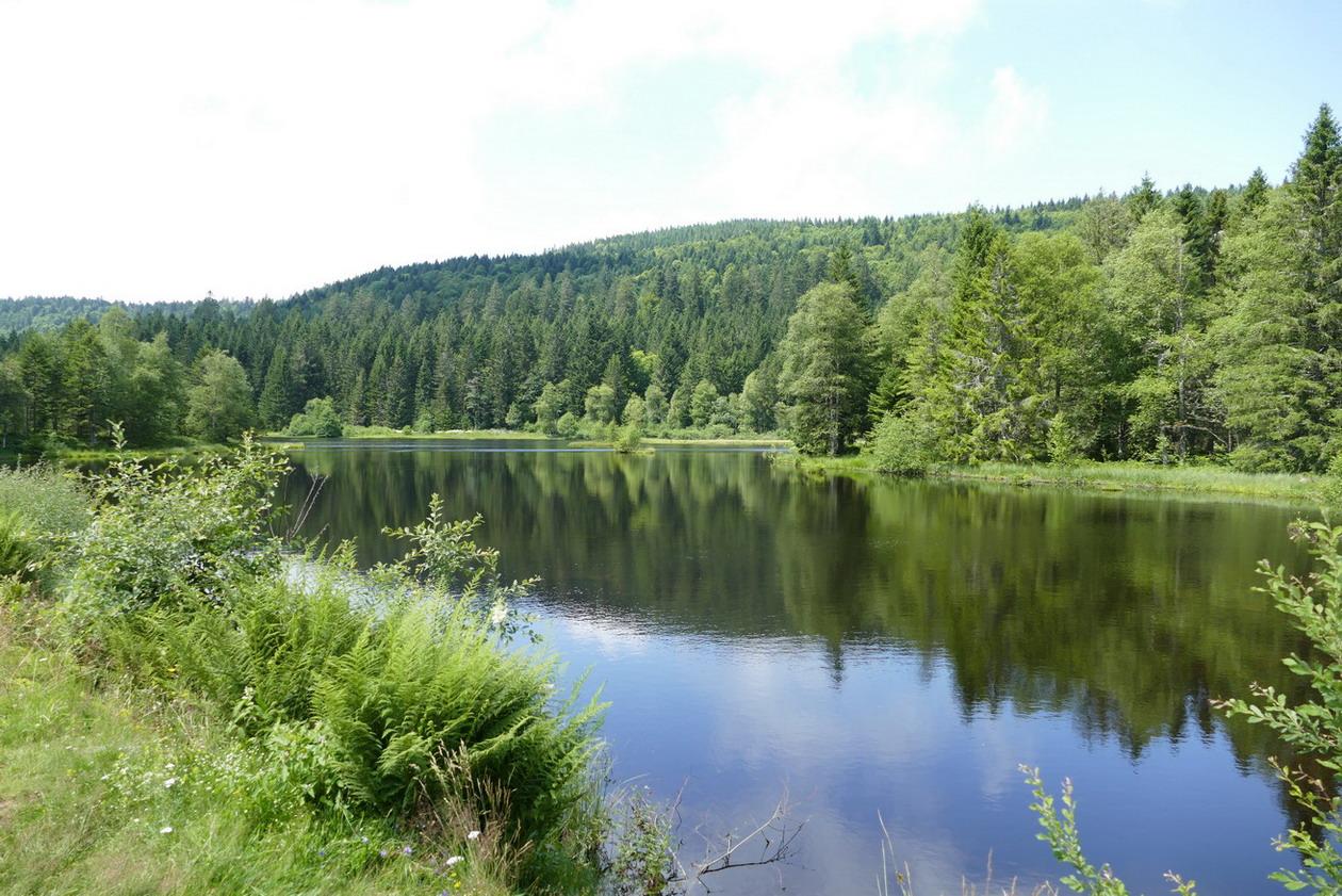 36. Le lac de Lispach