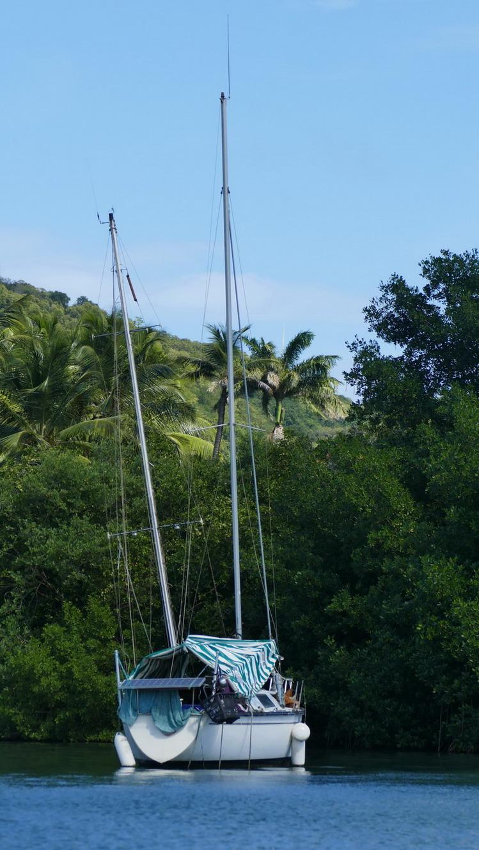 37. La Martinique, le Marin ; une coque est déjà sous l'eau