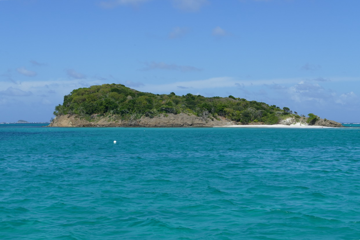 37. Les Tobago cays, l'îlet de Baradal