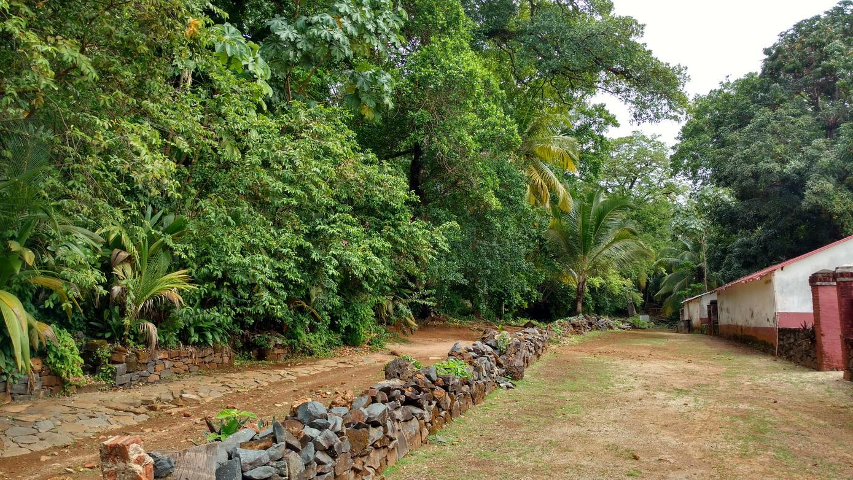 38. Île St Joseph, un sentier de randonnée aménagée par la Légion