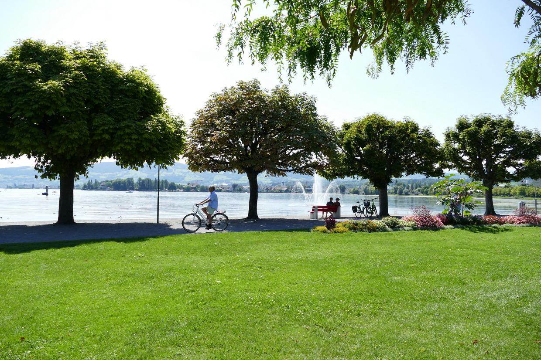 38. Le lac de Constance - rive sud